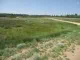 1349 Pinto Trail - Photo 3