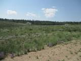 1349 Pinto Trail - Photo 6
