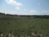 1349 Pinto Trail - Photo 8