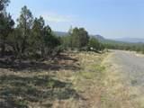 10791 52 1/2 Road - Photo 2