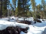 1691 Clarke Mountain Lane - Photo 2
