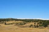 343 Chief Trail - Photo 10