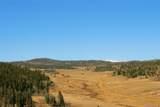 343 Chief Trail - Photo 11