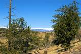 343 Chief Trail - Photo 13