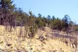 343 Chief Trail - Photo 14