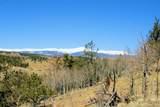 343 Chief Trail - Photo 17