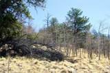 343 Chief Trail - Photo 19