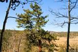 343 Chief Trail - Photo 22