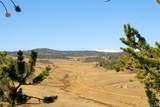 343 Chief Trail - Photo 26