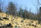 343 Chief Trail - Photo 29