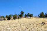 343 Chief Trail - Photo 4