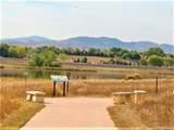535 Coyote Trail Drive - Photo 21