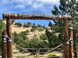 6 Elk Horn Ranch - Photo 1
