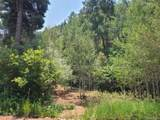 13117 Spruce Creek Circle - Photo 4