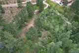 1133 Mount Champion Drive - Photo 1