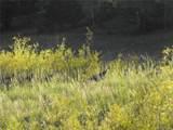 Waugh Mtn Rd - Photo 5