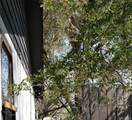 3608 Saint Vrain Street - Photo 1
