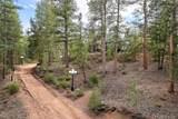 1355 Cinnamon Bear Road - Photo 3