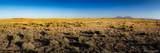 Lot 216 Colorado Land & Livestock - Photo 7