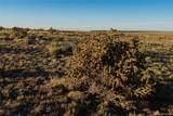 Lot 216 Colorado Land & Livestock - Photo 9