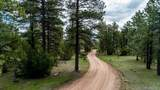 6765 Greenhorn Mountain Drive - Photo 37