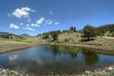 396 Eagle Nest Trail - Photo 27