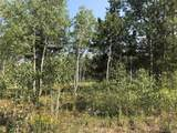 05 Colt Trail - Photo 2