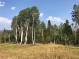 05 Colt Trail - Photo 3