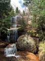 238 Waterfall Loop - Photo 3