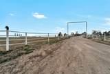 5335 County Road 137 - Photo 4