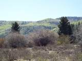 Sheep Creek Trail - Photo 1