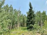 295 Silver Plume Road - Photo 12