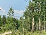 295 Silver Plume Road - Photo 9