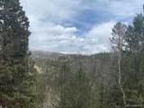 Rhyolite Mountain Mesa Road - Photo 2