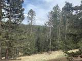 Rhyolite Mountain Mesa Road - Photo 3