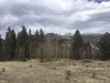 Rhyolite Mountain Mesa Road - Photo 5