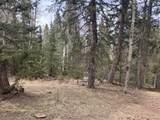 Rhyolite Mountain Mesa Road - Photo 6