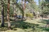978 Tenderfoot Drive - Photo 29