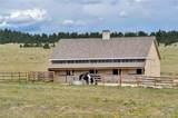 21050 Roxie Ridge View - Photo 35