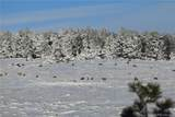 21050 Roxie Ridge View - Photo 39