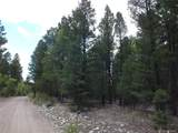 201/203 Big Bear Road - Photo 1