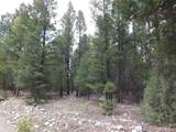 201/203 Big Bear Road - Photo 2