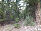 201/203 Big Bear Road - Photo 3