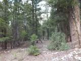201/203 Big Bear Road - Photo 3