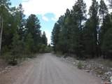 201/203 Big Bear Road - Photo 5