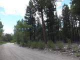 201/203 Big Bear Road - Photo 6