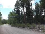 201/203 Big Bear Road - Photo 6