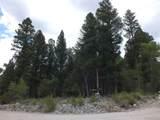201/203 Big Bear Road - Photo 7