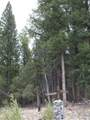 201/203 Big Bear Road - Photo 8
