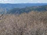 14860 Elk Mountain Trail - Photo 10